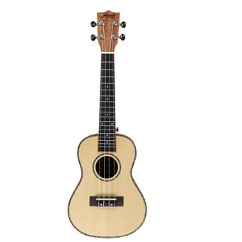 Morgan Guitars UK-C250SS Natural