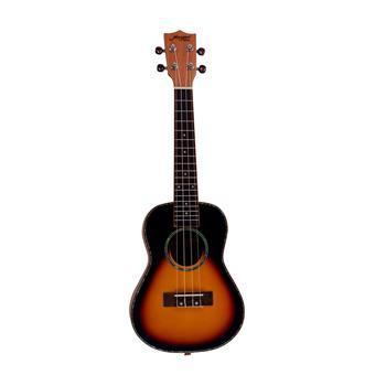 Morgan Guitars UK-T250SS Sunburst