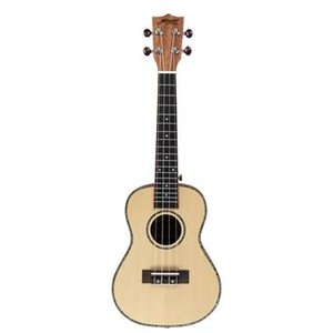 Morgan Guitars UK-T250SS Natural