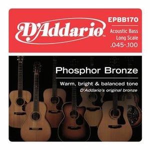 D'Addario EPBB170 Phosphor Bronze 4-String Acoustic Bass 45-100