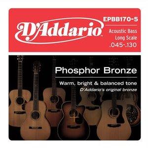 D'Addario EPBB170-5 Phosphor Bronze 5-String Acoustic Bass 45-130